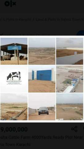 4000 sqyard plot for sale in areesha cattle society near bahria town