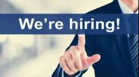 Urgently Required Candidates for Digital  Marketing Work