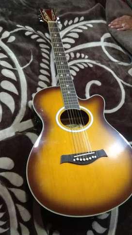 Hertz HZA6000TS guitar with bill