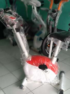 Magnrtic bike 739 N