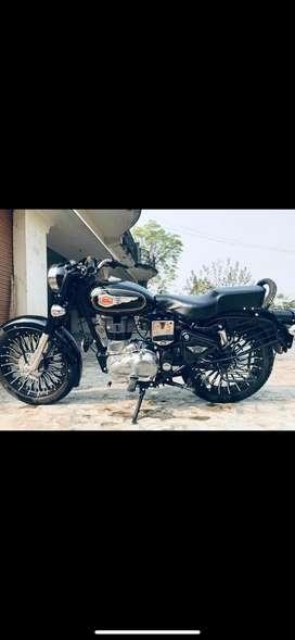 Brand new bike 79060988seven zero