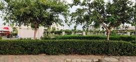 225 Sqyd Residential Corner Kothi 1st Floor in Sector 22B Chandigarh