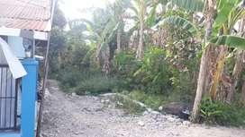 Dijual sebidang tanah dengan sertifikat hak milik, luas 2926m².