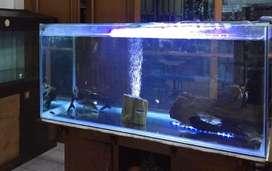 Jual aquarium besar + filter.