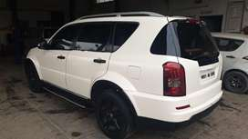 Rexton for sale