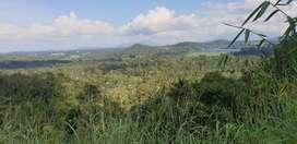 3.5 acre land