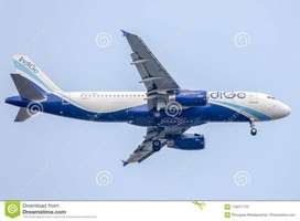 INDIGO JOBS APPLY NOW !!! JOB OFFER BY INDIGO AIRLINES HIGH PAID SALAR