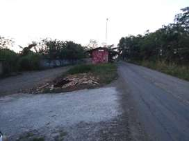 Tanah Kavling Dijual 100 Hektar Klari,dkt Surya Cipta Karawang Timur