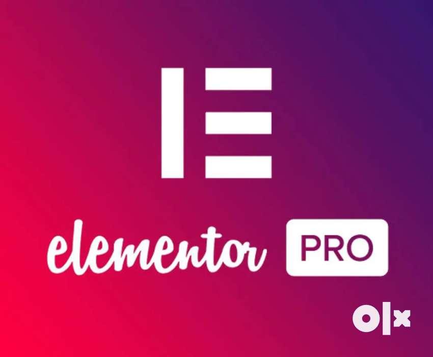 Elemter for website in WordPress 0