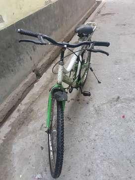 Single shauker cycle