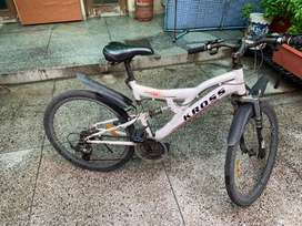 Kross cycle with gear