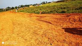 Pitapalli Nh 16 Road side plating area