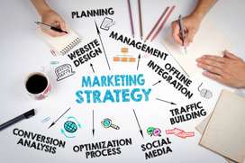 Best Seo, Digital Marketing and Content Writing Services