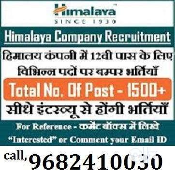 डायरेक्ट भर्ती हर्बल हिमालया कम्पनी में अर्जेन्ट में लड़के और लड़किया चा 0