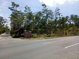 Tanah Zona Merah/Produksi Luas & Murah Dijalan Raya Solo-Semarang