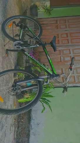 Sepeda Gunung Aloy merk PHOENIK