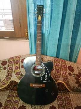 Want to sell Guitar