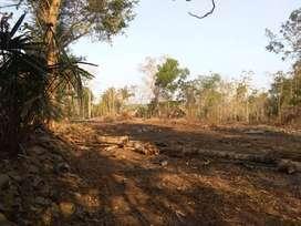Ayo Belilah Tanah Strategis Area Sentolo Kulonprogo Harga Nego
