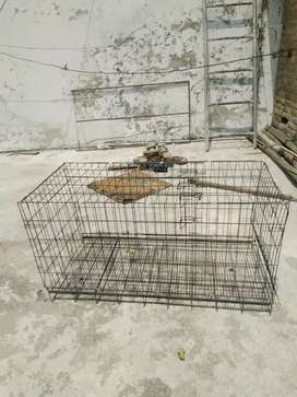 DOG CAGE FOR SALE new