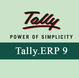 Female account officer work in tally