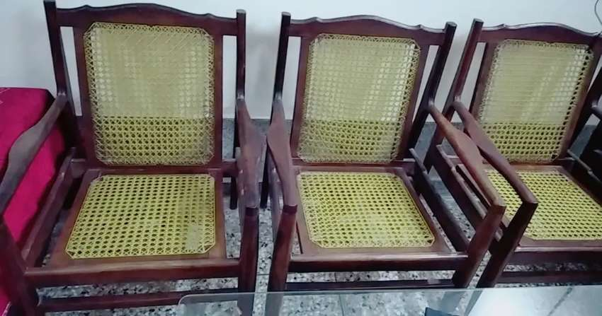 Taali Wooden Chairs