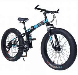 Imported fat bikes