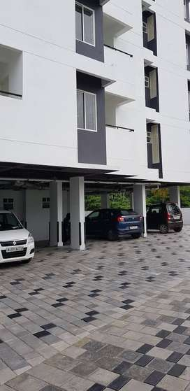 2BHK fully furnished apartment on Rent near Campion School, Edapally