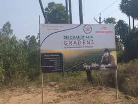 form land plots for sale at singanadhorapalem neaar k.kotapadu