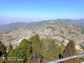 Land for sell in kohima