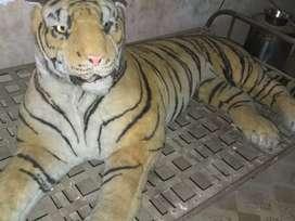Tiger show pice