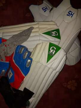 Cricket  kit some day use