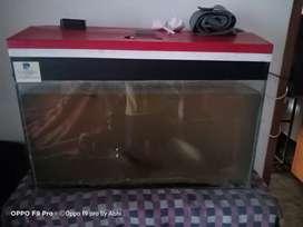 aquarium tank .