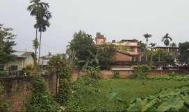 1Katha miyadi land for sell at Beltola