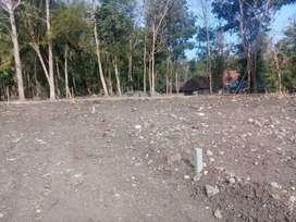 Raih Diskon 25% Tanah Kavling di Tajem, Dekat Jogja Bay