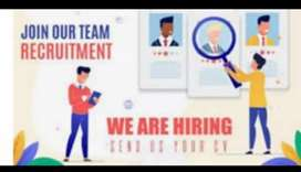 Job searches for fresher