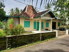 Dikontrakkan Rumah Nuansa Jawa