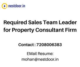 Required Sales Team Leader for Property Consultant Firm