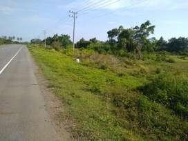 Tanah murah staregis di pinggir jalan Calang - Banda Aceh