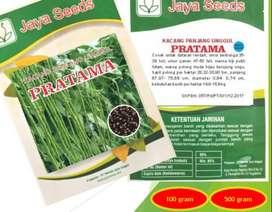 Benih Bibit Kacang Panjang Pratama Jaya Seeds