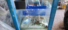Aquarium 40*30*30