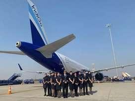 8- hr shifts fixed salary Graund staff indigo airlines job