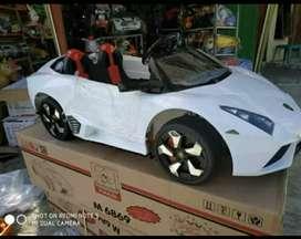Mobil Aki Model Lamborghini