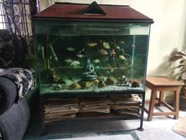 Iron stand for Aquarium - Very Strong
