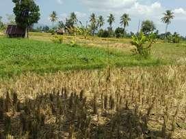 Jual tanah lombok barat mataram