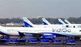 jobs for you! Indigo invites For, Ground / Airport Station Attendant.