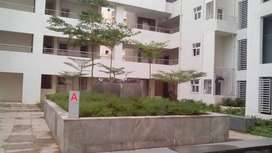 2 bhk flat available for sale in rohan mithila