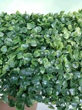 daun dolar sintetis - tanaman rambat artificial - daun plastik