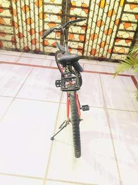 Avon cycle with red rims