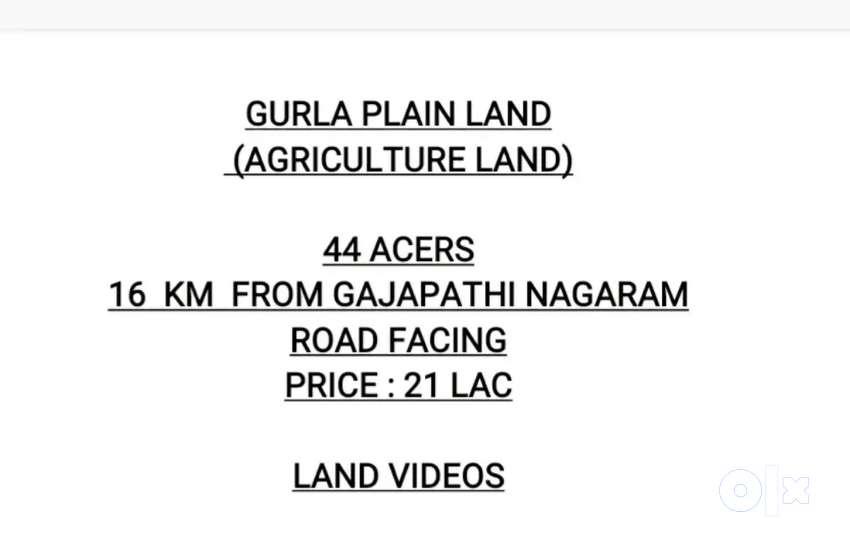 Gurla 44 acres
