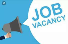 Fast working Waiter required for road line hotel.
